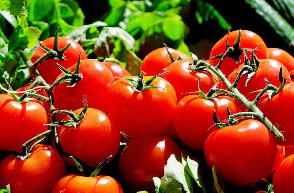 tomatenhauben
