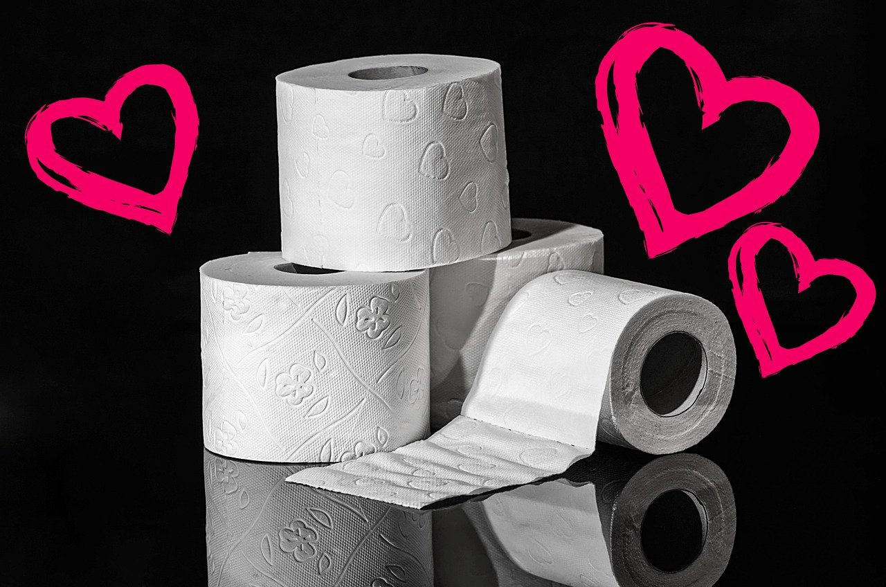 toilettenpapier-charmin-zewa