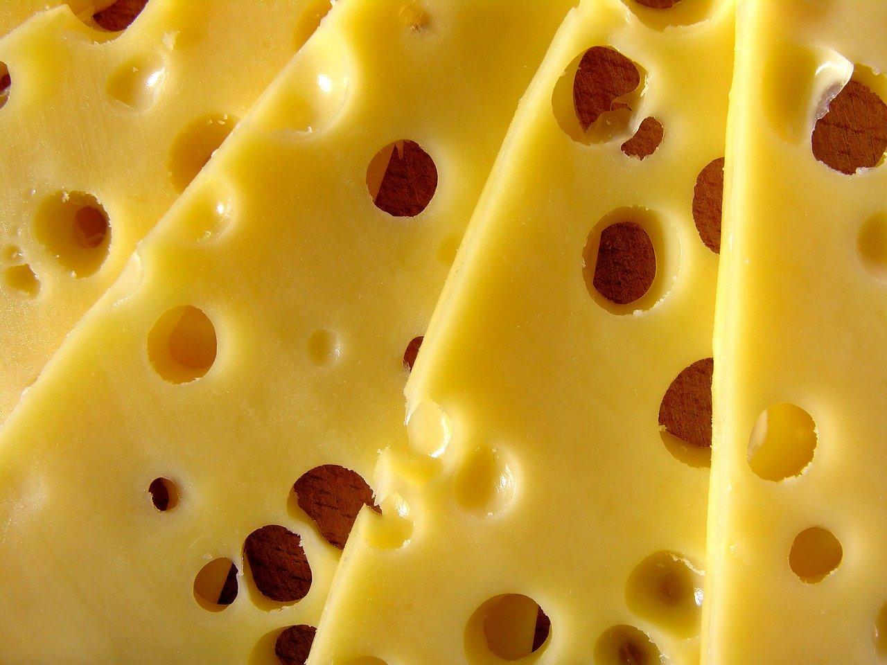 Käse Aufbewahrungsbox